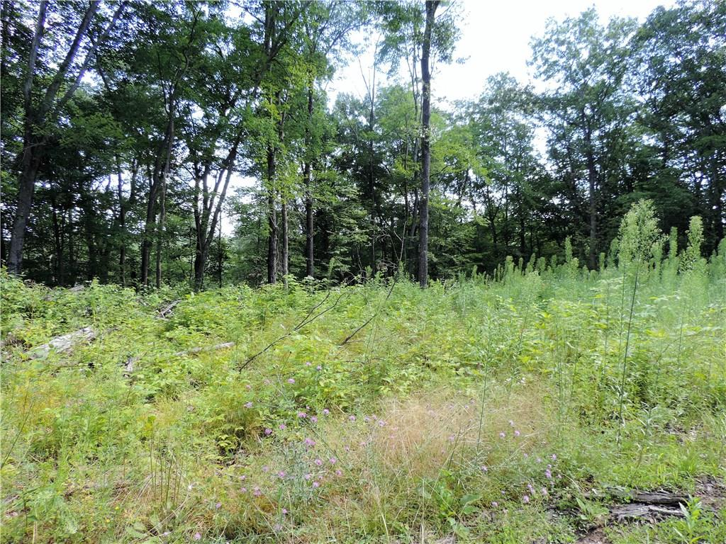 W5440 Whalen Lake Rd Property Photo - Trego, WI real estate listing