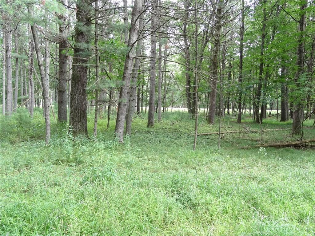 00 Badger Lane Property Photo - Hatfield, WI real estate listing