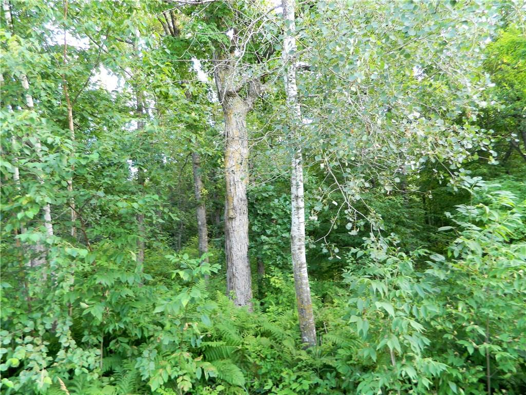 0 340th Avenue, Frederic, WI 54837 - Frederic, WI real estate listing