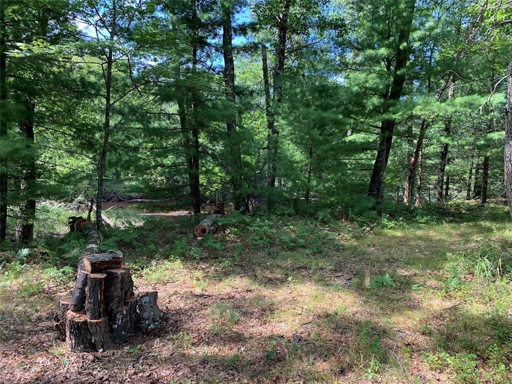 0 lot 2 Reshel Road, Pittsville, WI 54466 - Pittsville, WI real estate listing