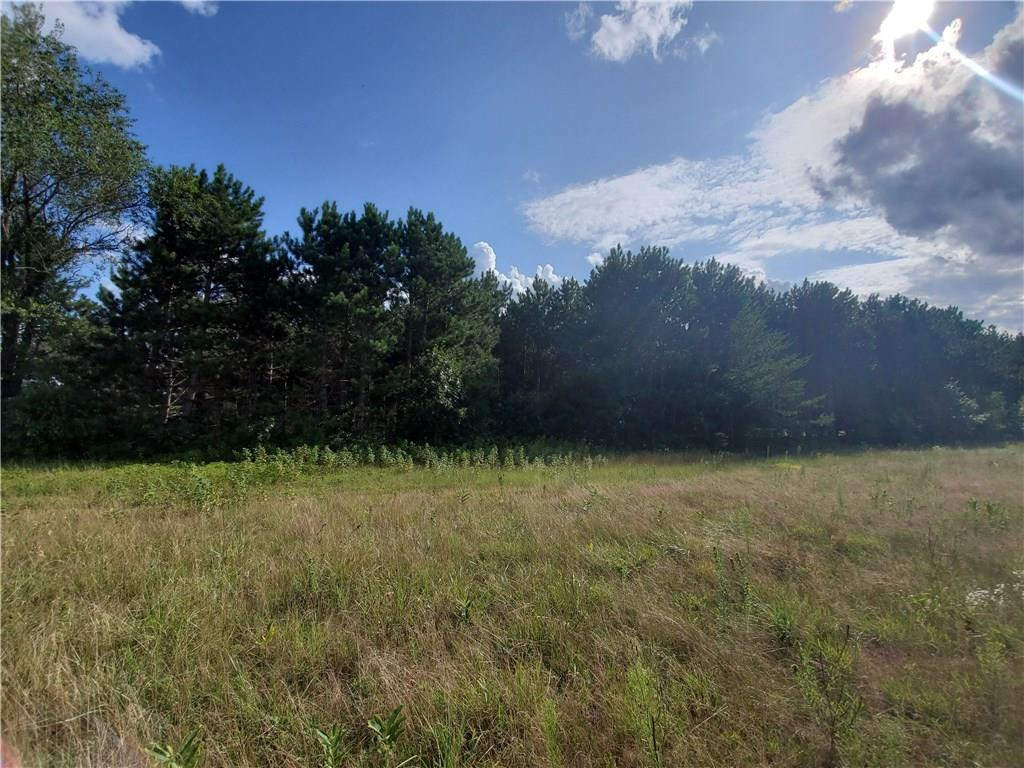0 Highway SS Property Photo - Fall Creek, WI real estate listing