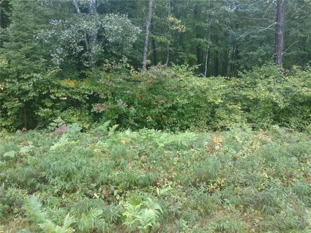 0 Smith Lake Road Property Photo - Barnes, WI real estate listing