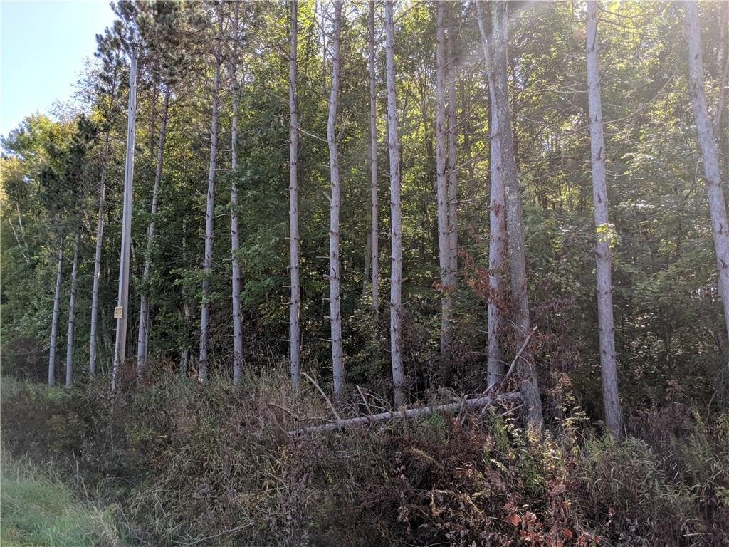 34 Acres County Highway NL, Fall Creek, WI 54742 - Fall Creek, WI real estate listing