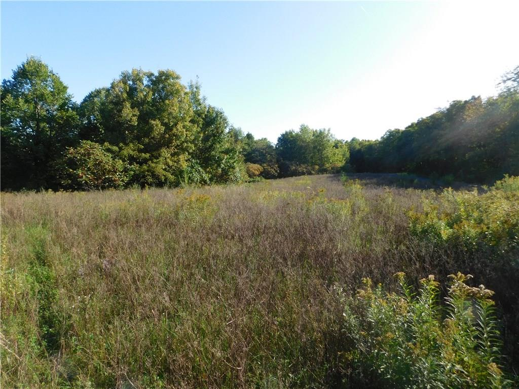 Lot 1 280th Street Property Photo - Boyceville, WI real estate listing