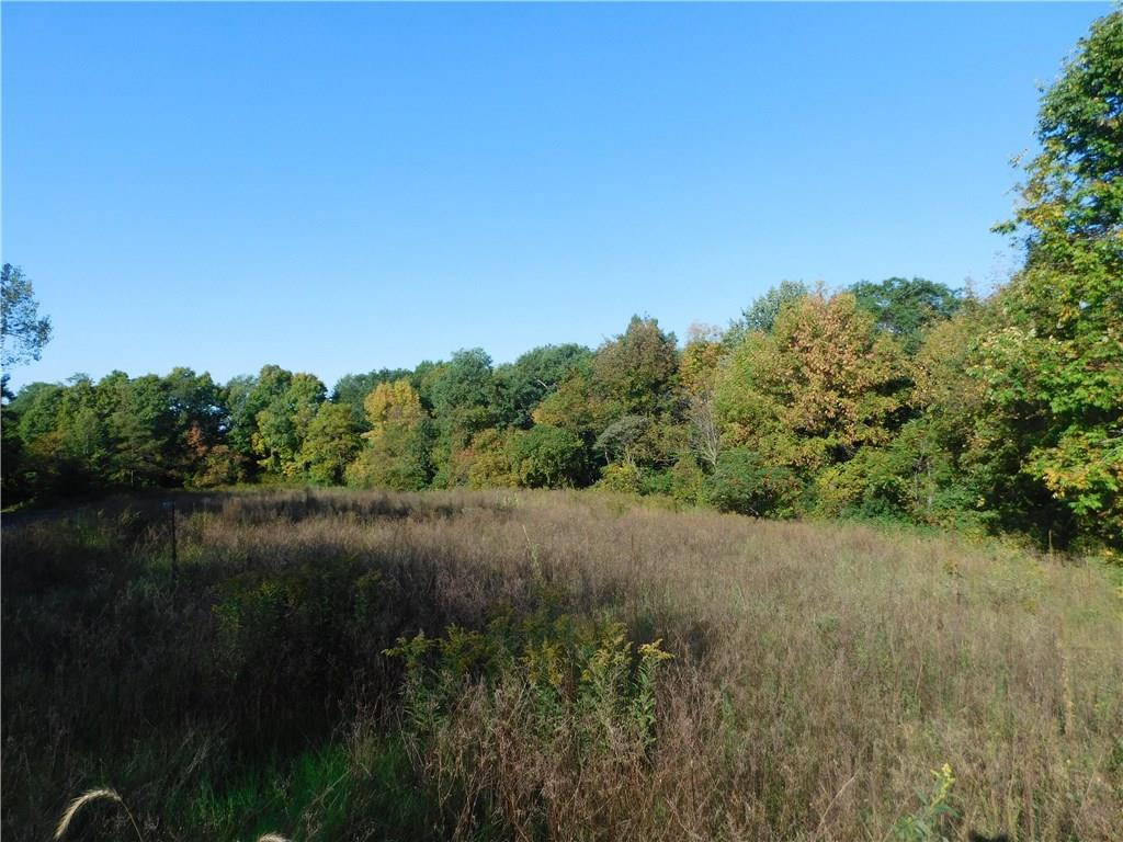 Lot 2 280th Street Property Photo - Boyceville, WI real estate listing