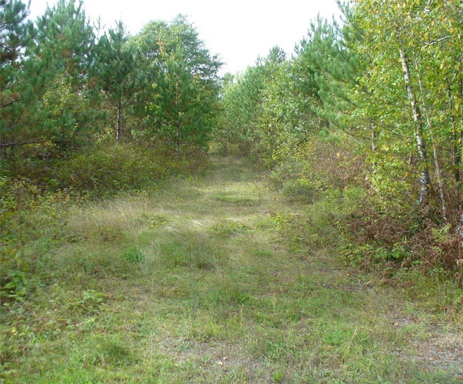 000000 Hackbarth Road Property Photo - Trego, WI real estate listing