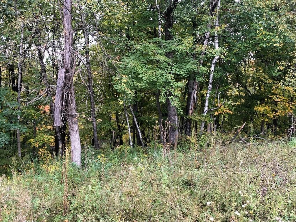0 Midtown Road, Siren, WI 54872 - Siren, WI real estate listing