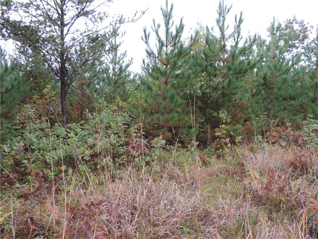 TBD Sugar Shores Dr. Property Photo - Minong, WI real estate listing
