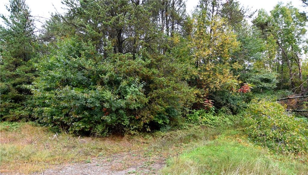 Lot 5 Pinewood Avenue Property Photo