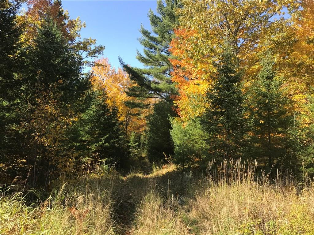 0 Tri Lakes Road Property Photo - Drummond, WI real estate listing