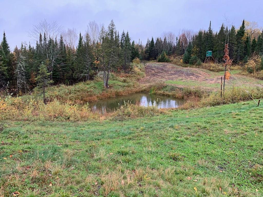 Off Silver Creek Rd Property Photo - Butternut, WI real estate listing
