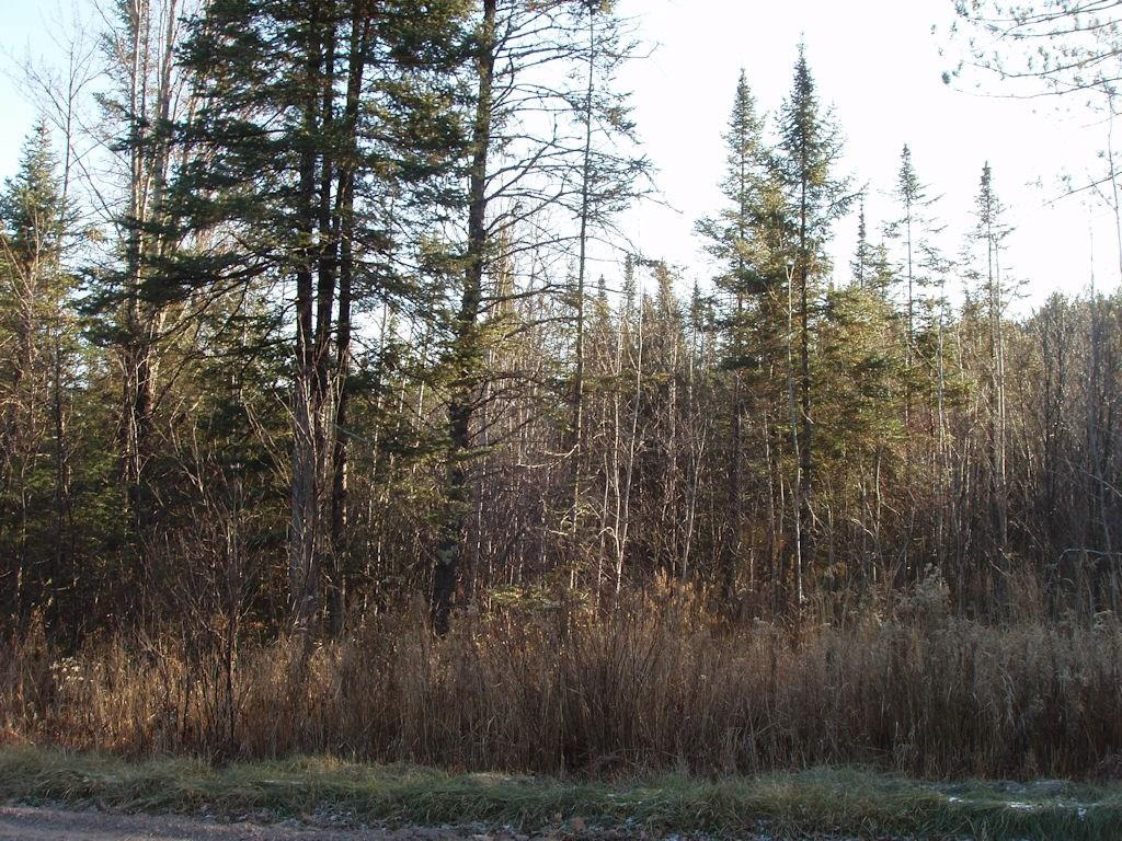 On Perch Lake Road, Fifield, WI 54524 - Fifield, WI real estate listing