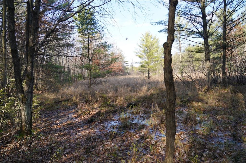0 Black Creek Road, Fairchild, WI 54741 - Fairchild, WI real estate listing