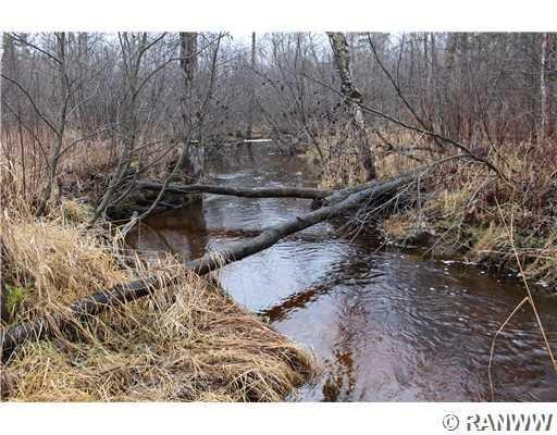 40 Acres Helsing Road Property Photo - Ojibwa, WI real estate listing