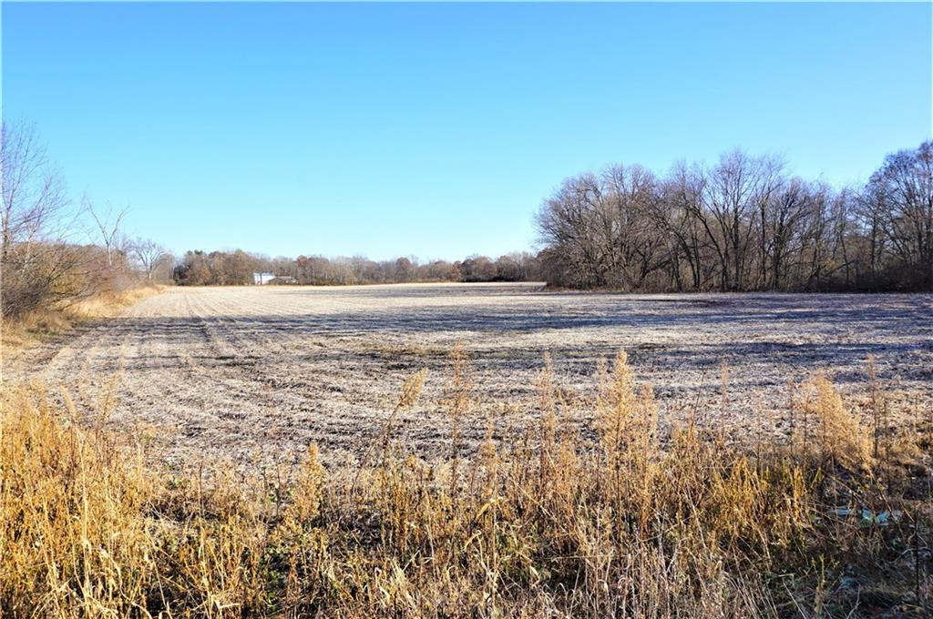 44 acres 250th Avenue, Elmwood, WI 54740 - Elmwood, WI real estate listing