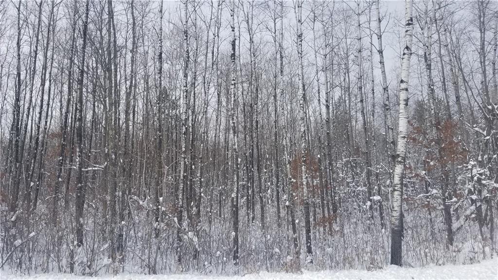 On Birch Road Property Photo