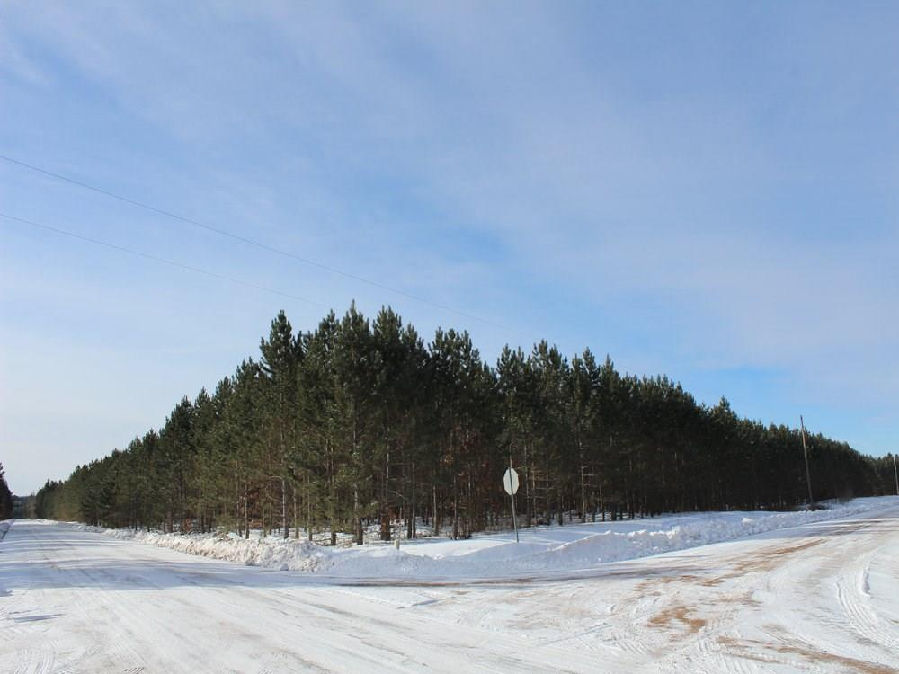 ON Ross 8223-1 Road Property Photo - Trego, WI real estate listing