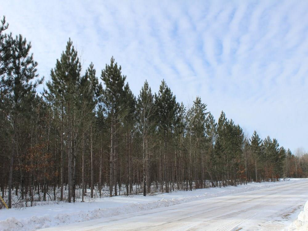 ON Whalen Lake 8223-5 Road Property Photo - Trego, WI real estate listing