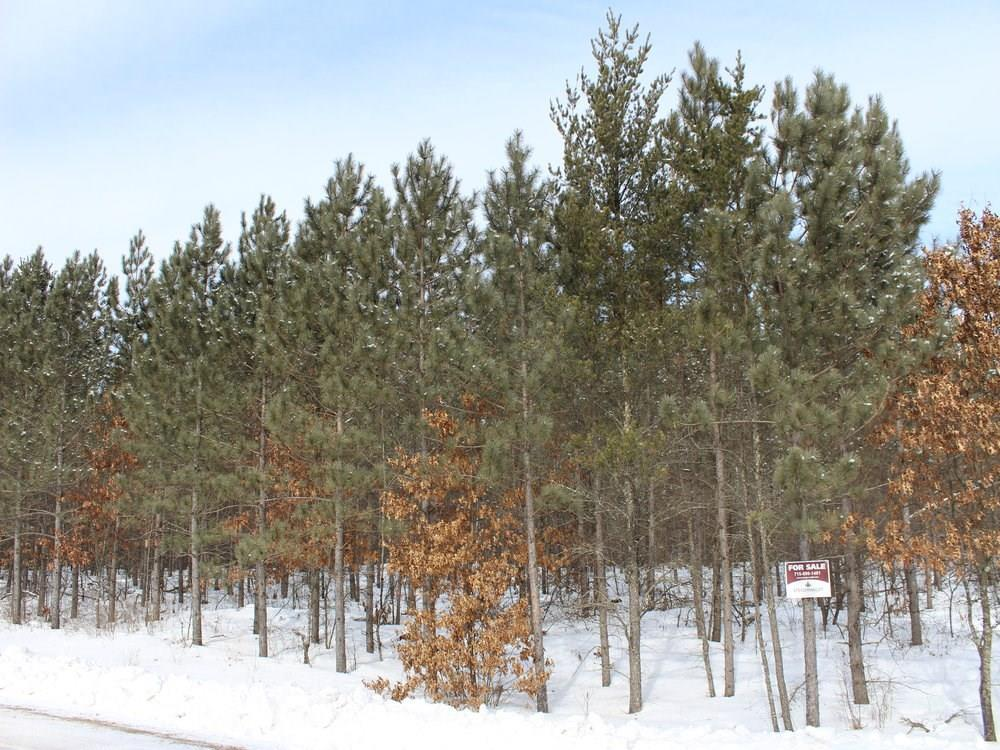 ON Whalen Lake 8223-6 Road Property Photo - Trego, WI real estate listing