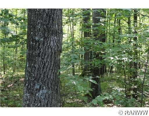 0 101 Trail Property Photo - Ladysmith, WI real estate listing