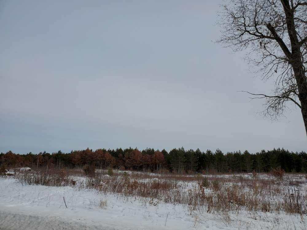 On Larson 8215-4 Road Property Photo - Grantsburg, WI real estate listing