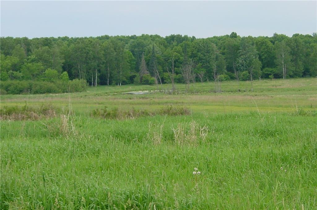 75 Acres on Edming Road, Glen Flora, WI 54526 - Glen Flora, WI real estate listing