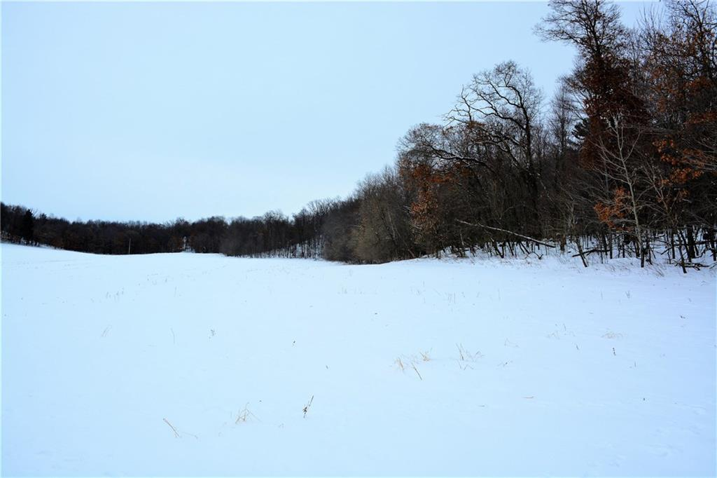 0 County V Road Property Photo - Wheeler, WI real estate listing
