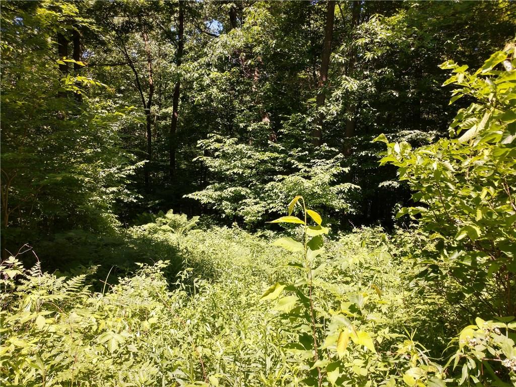 XXX 18TH Avenue, Turtle Lake, WI 54889 - Turtle Lake, WI real estate listing