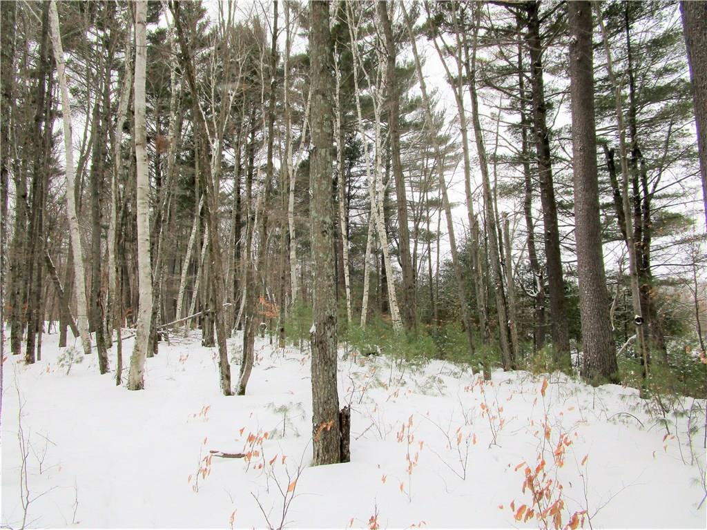 0 100th Street, Frederic, WI 54837 - Frederic, WI real estate listing