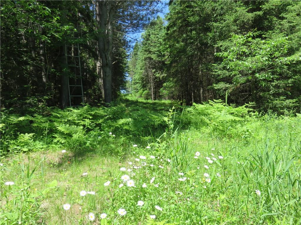 77353 Ackerman Road Property Photo - Glidden, WI real estate listing
