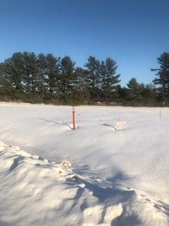 Lot 37 Hope Lane Property Photo - Eau Claire, WI real estate listing