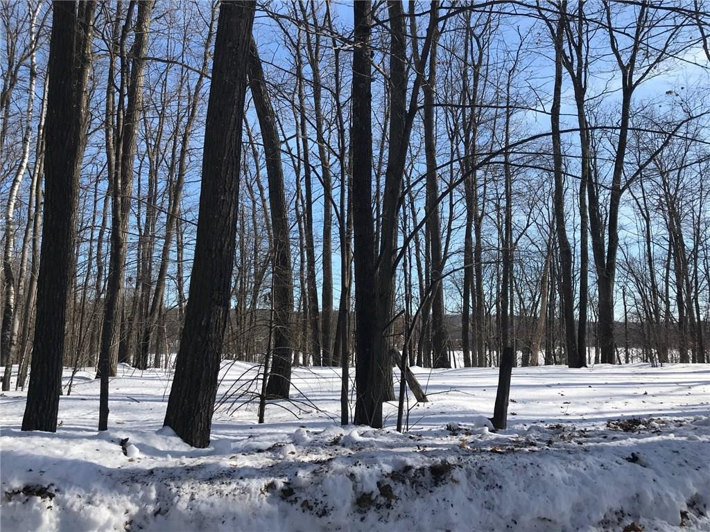 0 N Ham-Holly Drive Property Photo - Stone Lake, WI real estate listing
