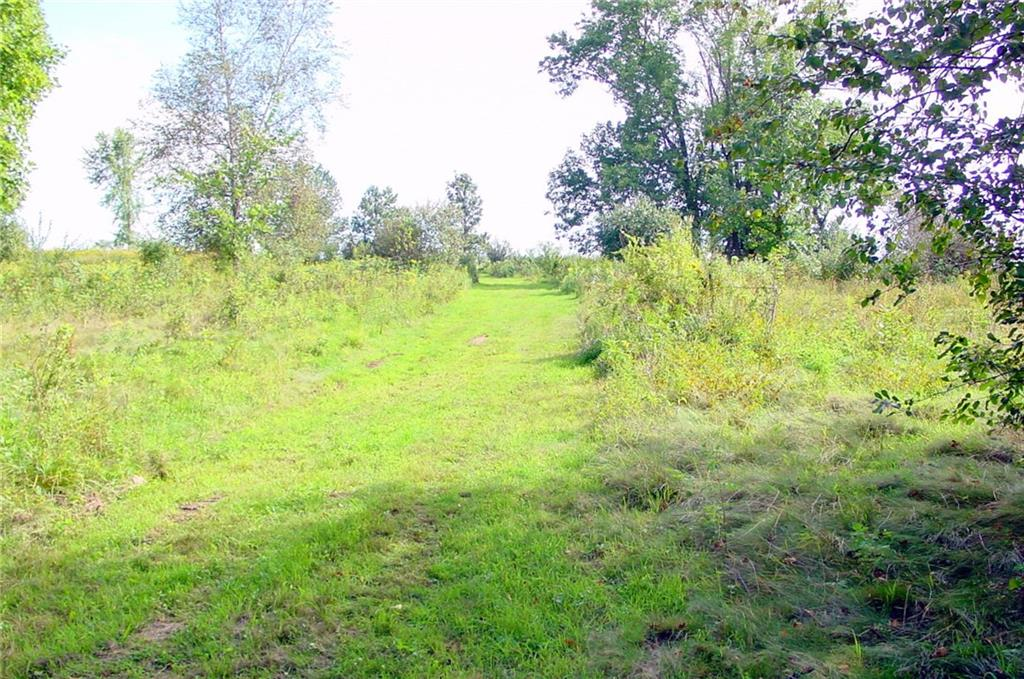 43 Acres via Easement Property Photo - Conrath, WI real estate listing