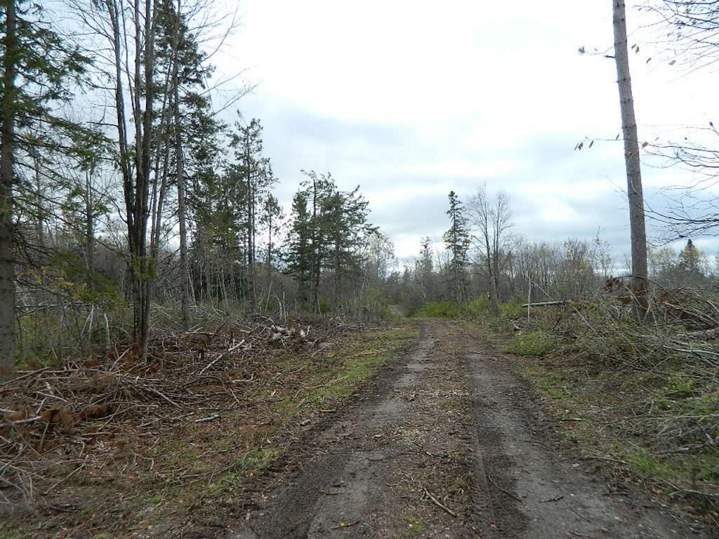 ON Western Breeze, Ojibwa, WI 54862 - Ojibwa, WI real estate listing