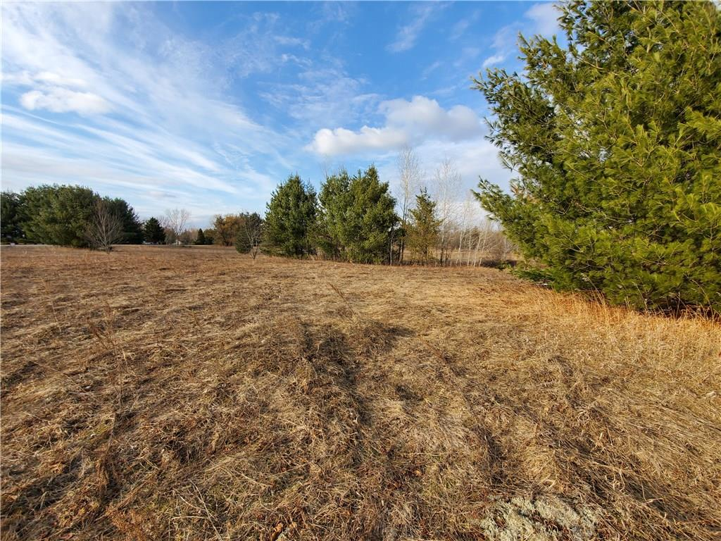 Lot 1 Minnesota Drive Property Photo - Eleva, WI real estate listing