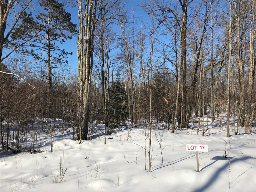 Lot 17 Birken Trail Road Property Photo - Hayward, WI real estate listing
