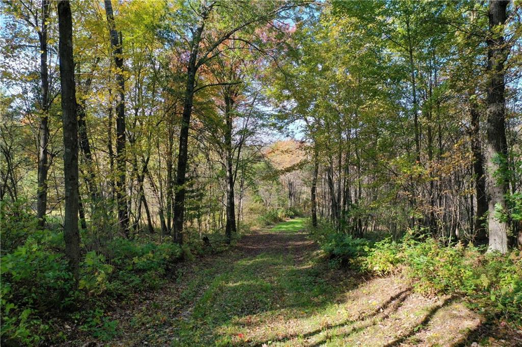 14692 Section One Rd., Hixton, WI 54635 - Hixton, WI real estate listing