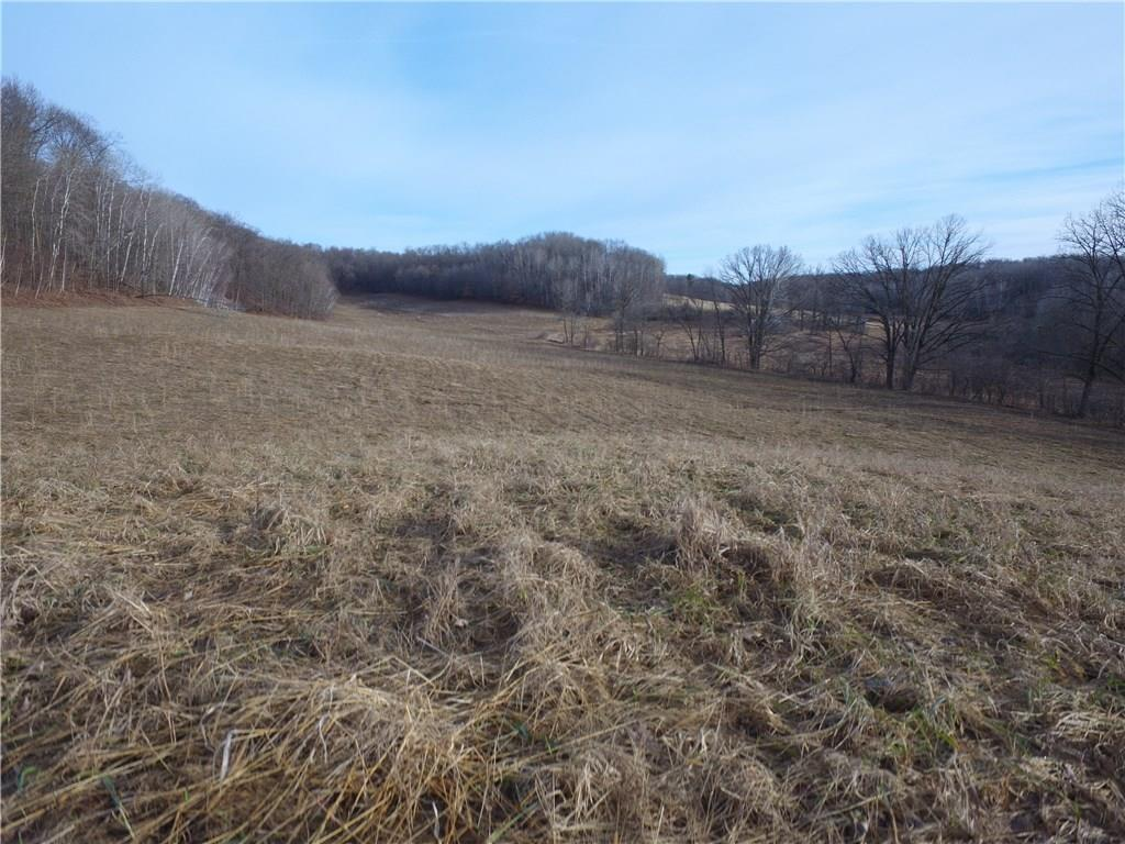 0 Hwy 64 Property Photo - Boyceville, WI real estate listing