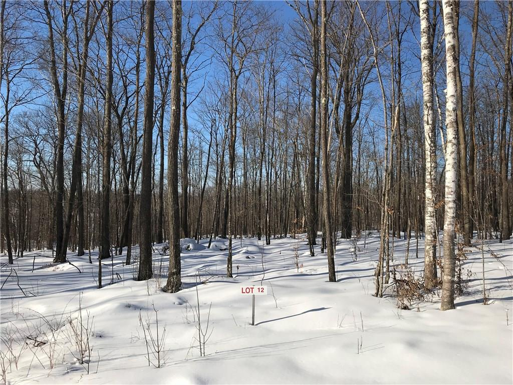 Lot 12 Birken Trail Road Property Photo - Hayward, WI real estate listing