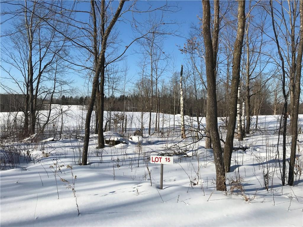 Lot 15 Birken Trail Road Property Photo - Hayward, WI real estate listing