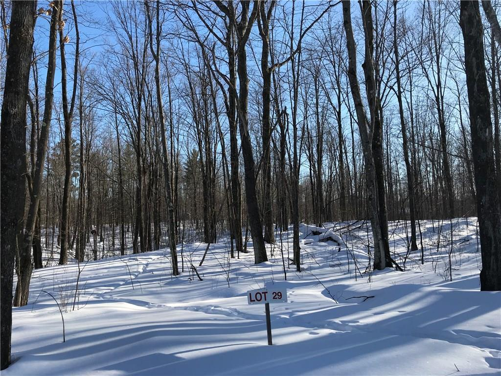 Lot 29 Birken Trail Road Property Photo - Hayward, WI real estate listing