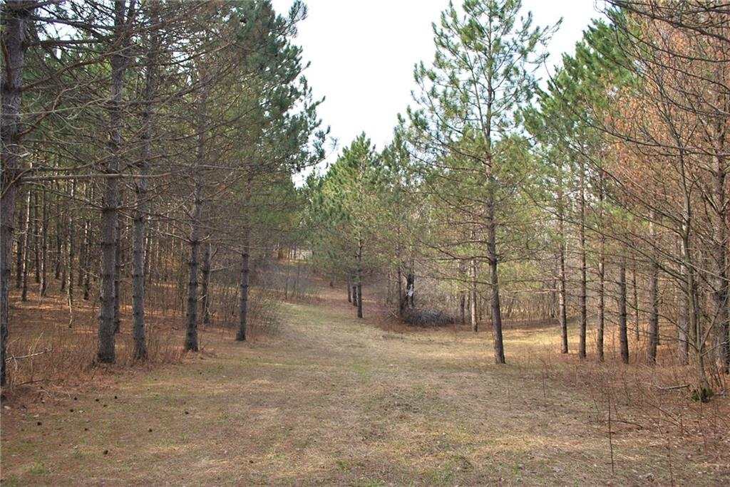 Lot 2 2.4 Acers on 280th Ave Property Photo - Holcombe, WI real estate listing