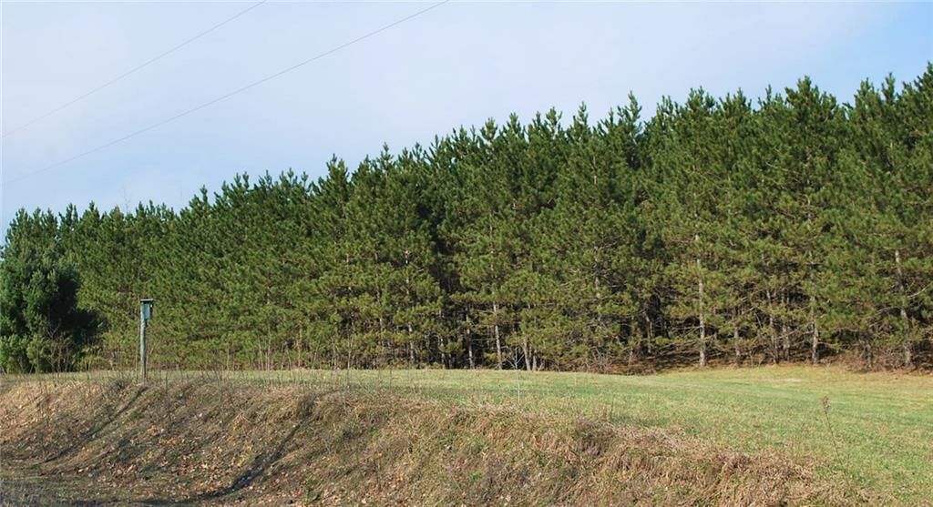 Lot 1 2.8 Acres on 280th Ave Property Photo - Holcombe, WI real estate listing