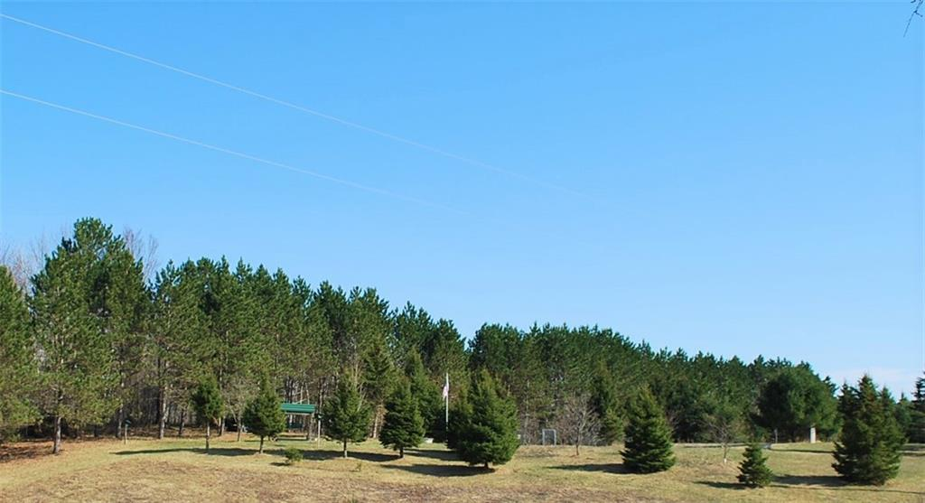 10.1 Acres on 182nd St Property Photo - Holcombe, WI real estate listing