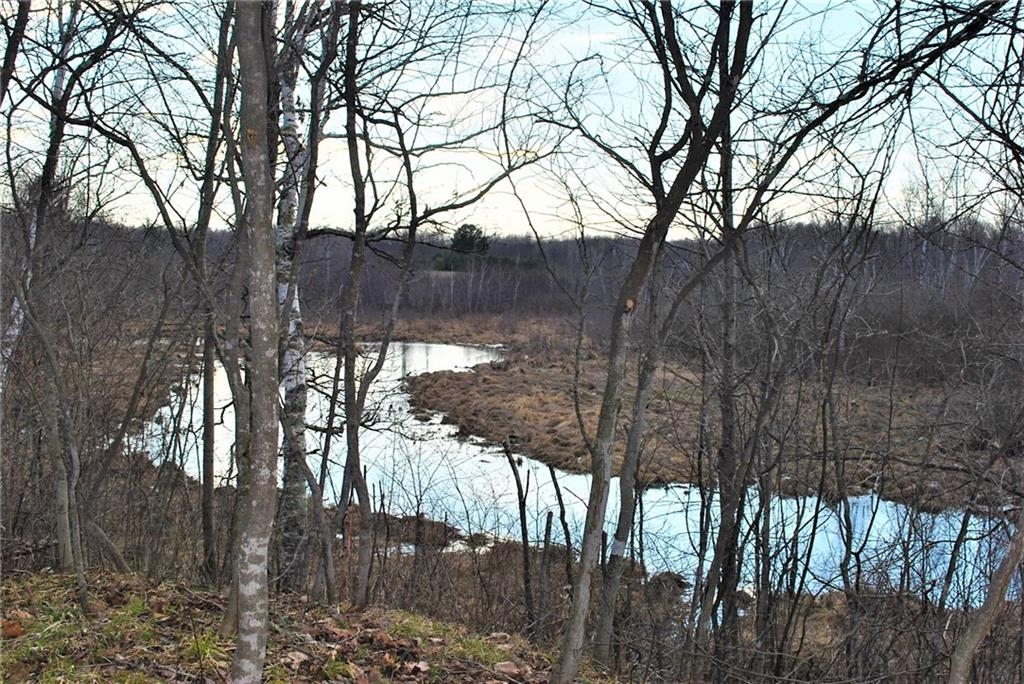 7.3 Acres on 182nd St Property Photo - Holcombe, WI real estate listing
