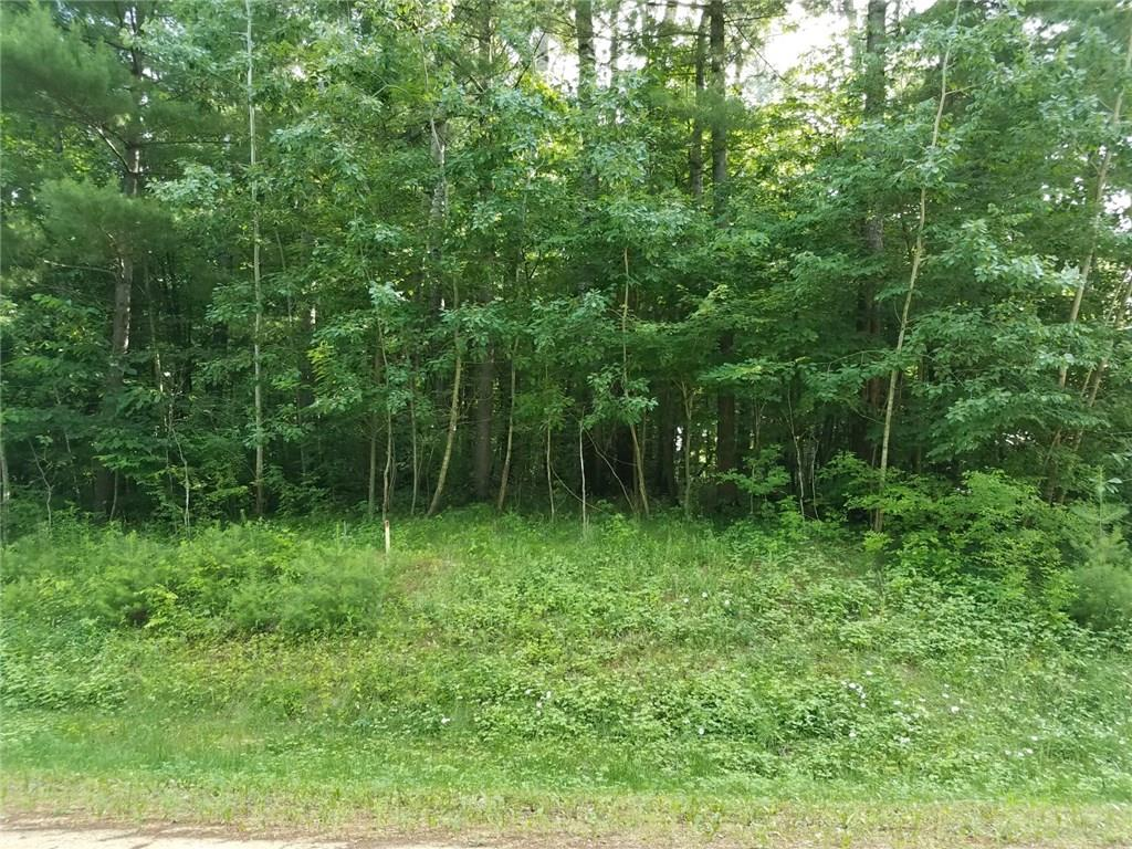 Lot 18 297th Street Property Photo - Eau Galle, WI real estate listing