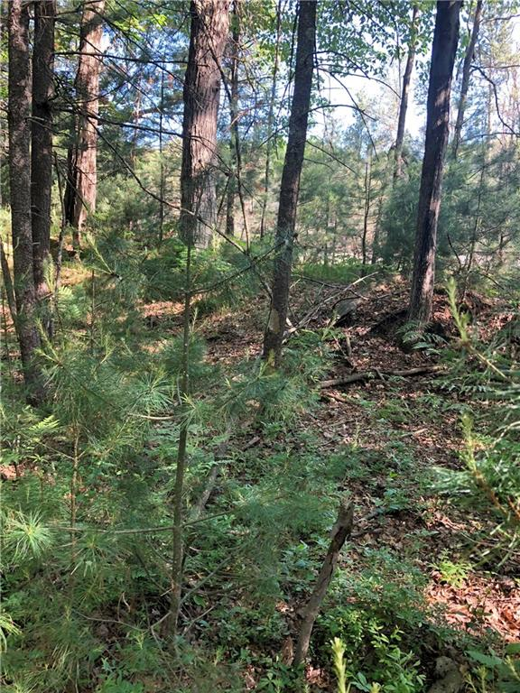 Lot 17 Circle Lane Property Photo - Hatfield, WI real estate listing