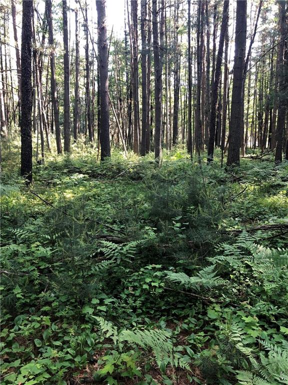 Lot 16 Circle Lane Property Photo - Hatfield, WI real estate listing