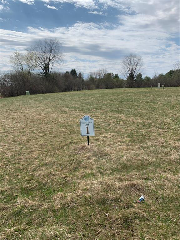 Lot 1 Willow Creek Parkway Property Photo - Chippewa Falls, WI real estate listing