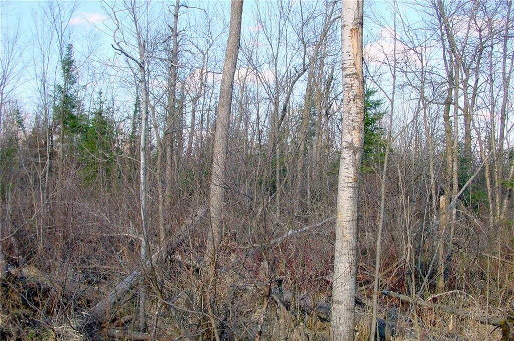 20 Acres on Cloverland Road, Conrath, WI 54731 - Conrath, WI real estate listing